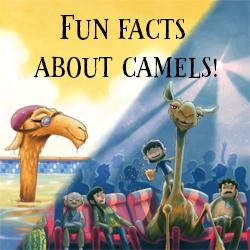 Camel - thumbnail